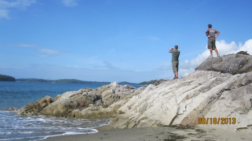 Grig and I search in vain for whales. We might as well have been looking for Wales.