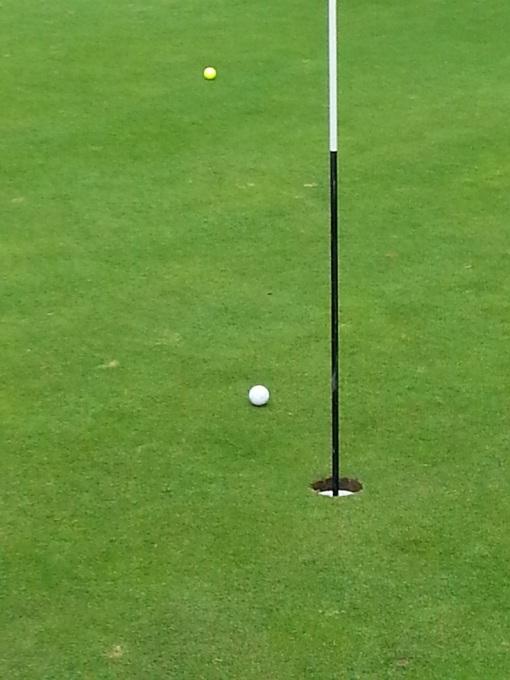 golfing Arrowsmith 071